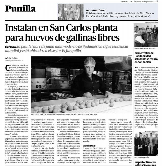 Coliumo: Instalan en San Carlos planta para huevos de gallinas libres