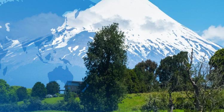 ChileCarne es parte de Chile Origen Consciente, programa del Minagri que implementa ODEPA