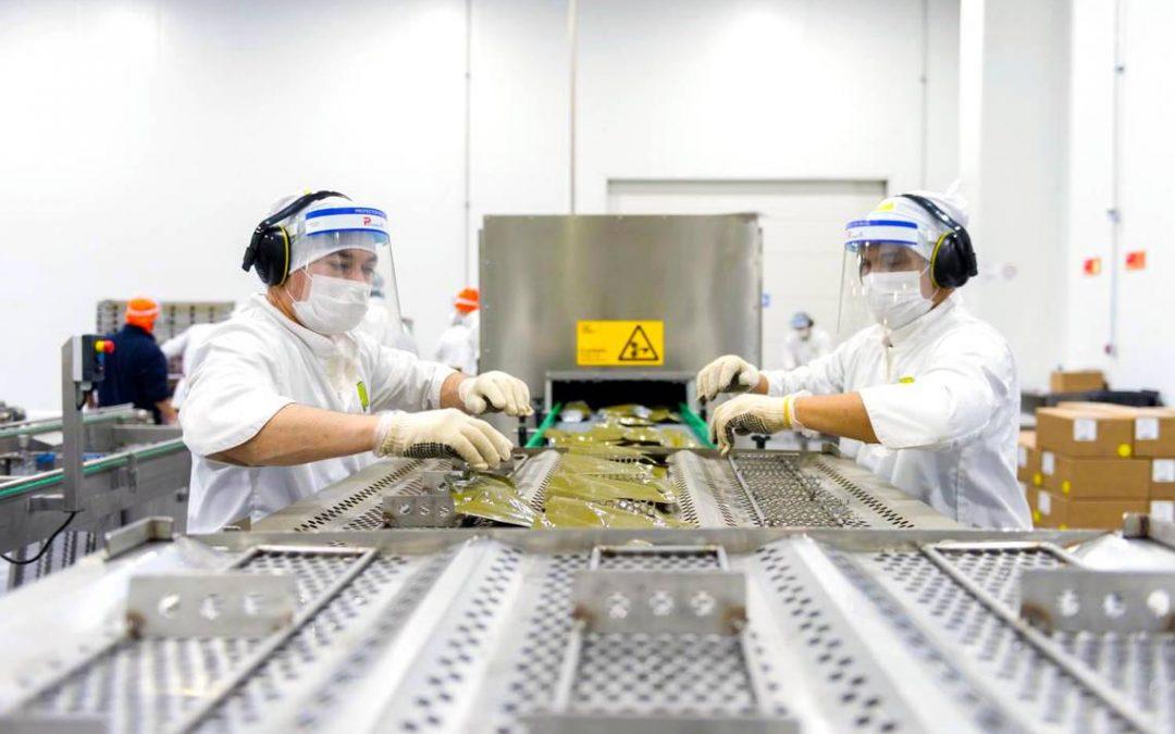 El desafío de las canastas de alimentos de la Junaeb 2020 – 2021: Otro modelo de negocio